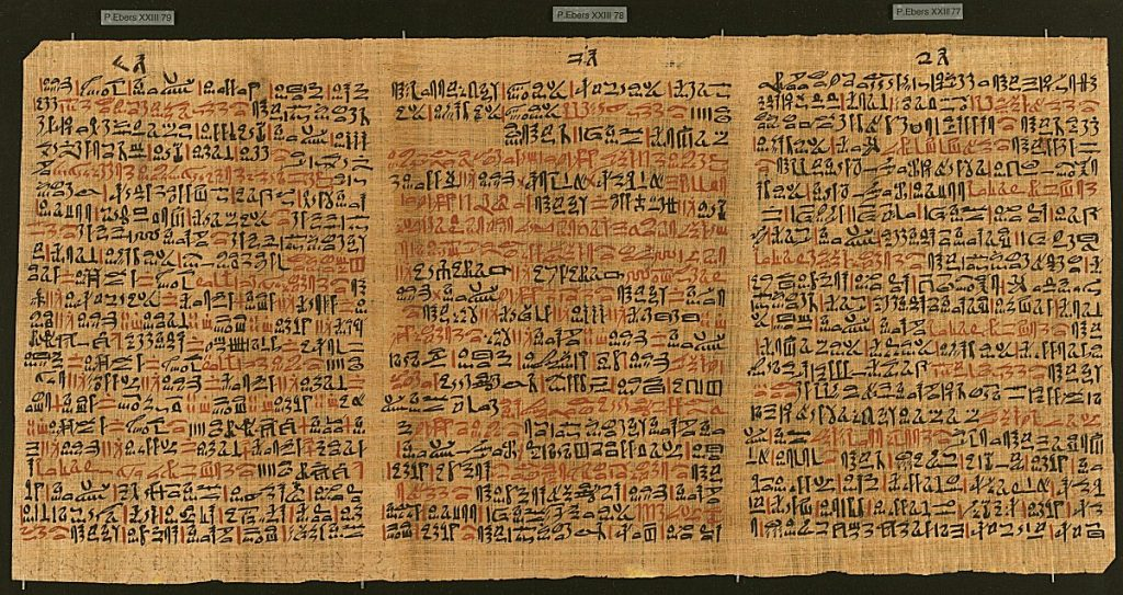 the Papyrus ebers from ancient egypt detailing healing herbs