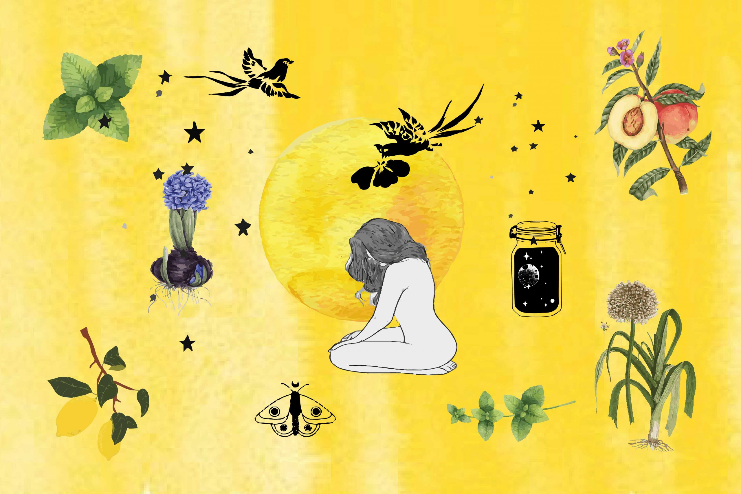 Herbs for Self Love