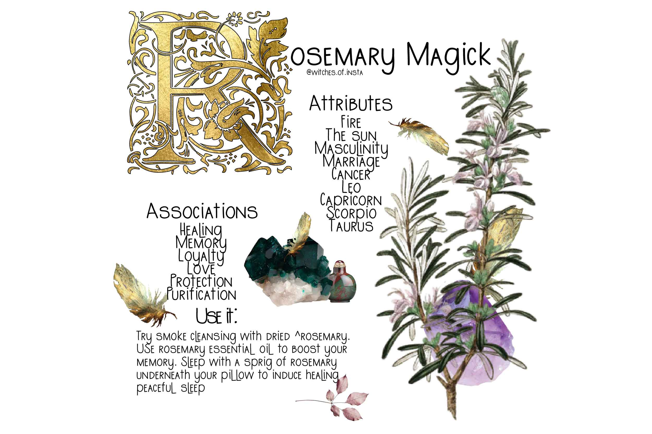rosemary magick