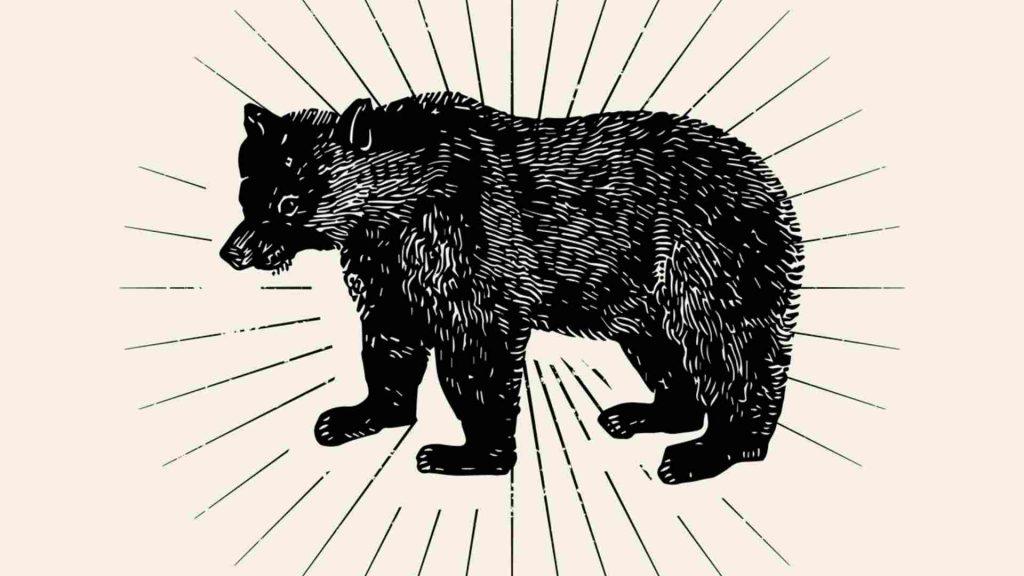 The Bear as a norse spirit animal