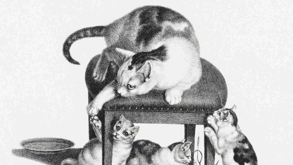 cat sitting on a stool playing with 3 kittens below the stool