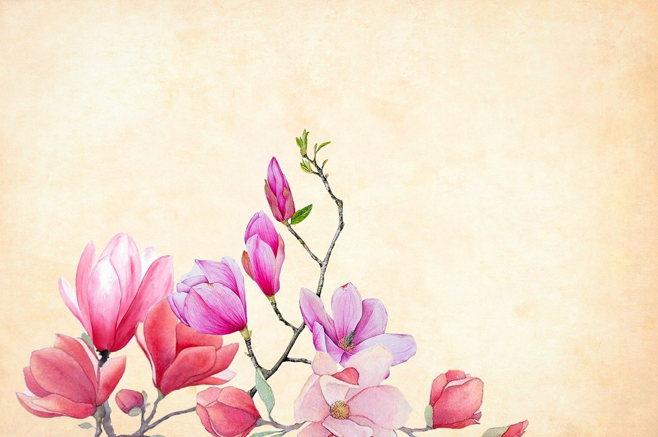 watercolour painted spring flowers