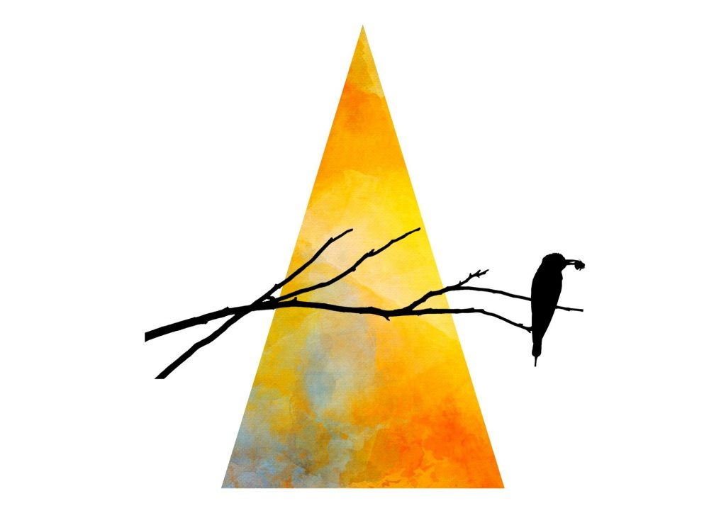 witch wand with bird