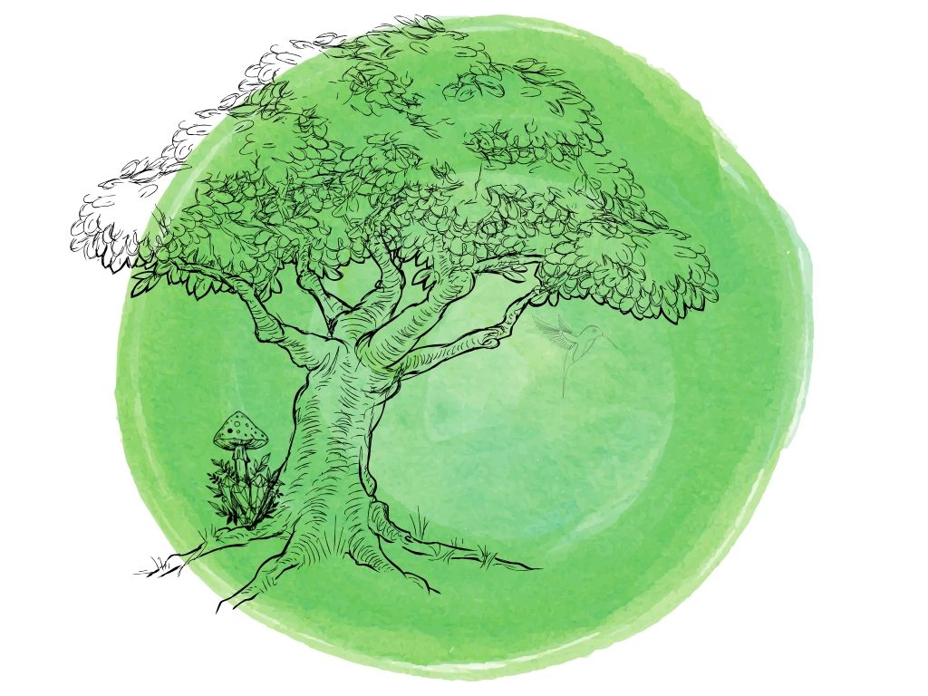 what is a green witch tree with hummingbird and mushroom on a green background