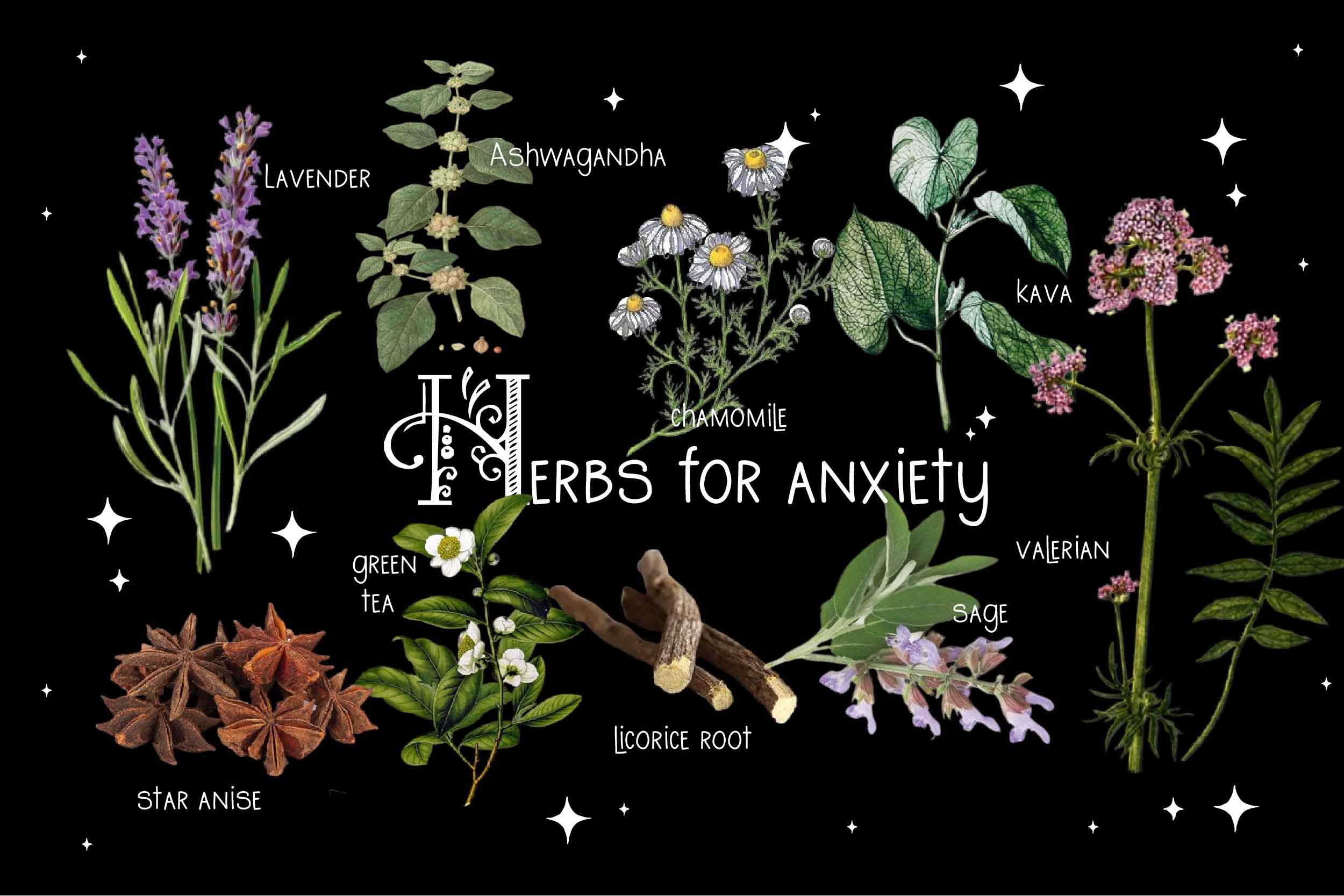 Herbs-For-Anxiety 9 herbs on black background