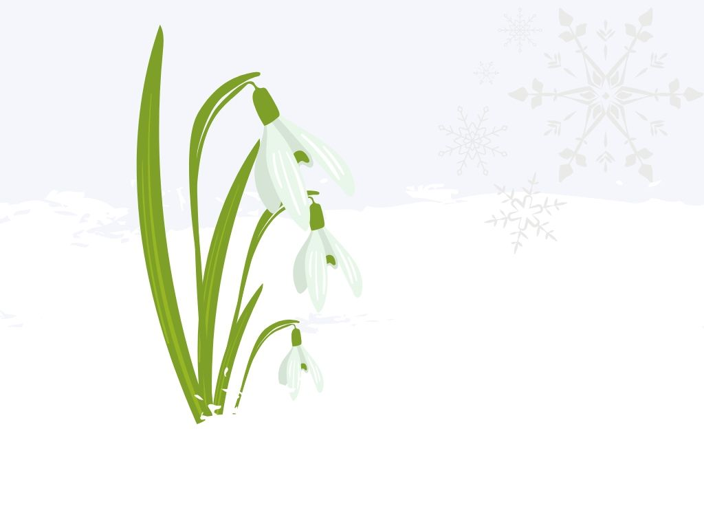 imbolc symbols illustrated snowdrops in the snow with snowflakes in the top right corner