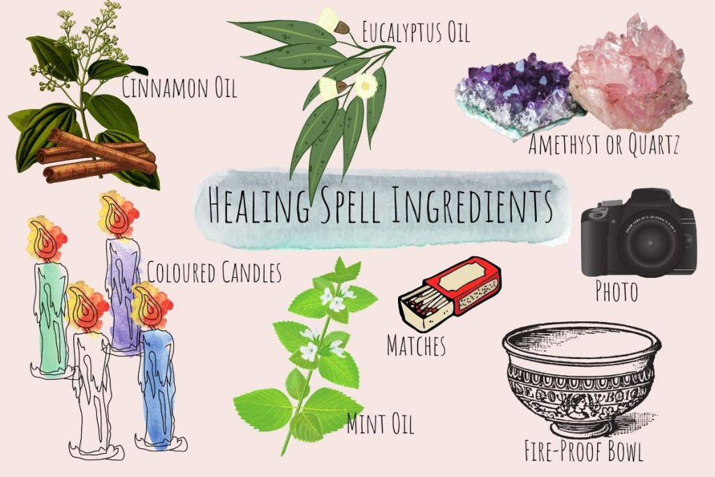 healing spell ingredients illustrated and named on a pink background