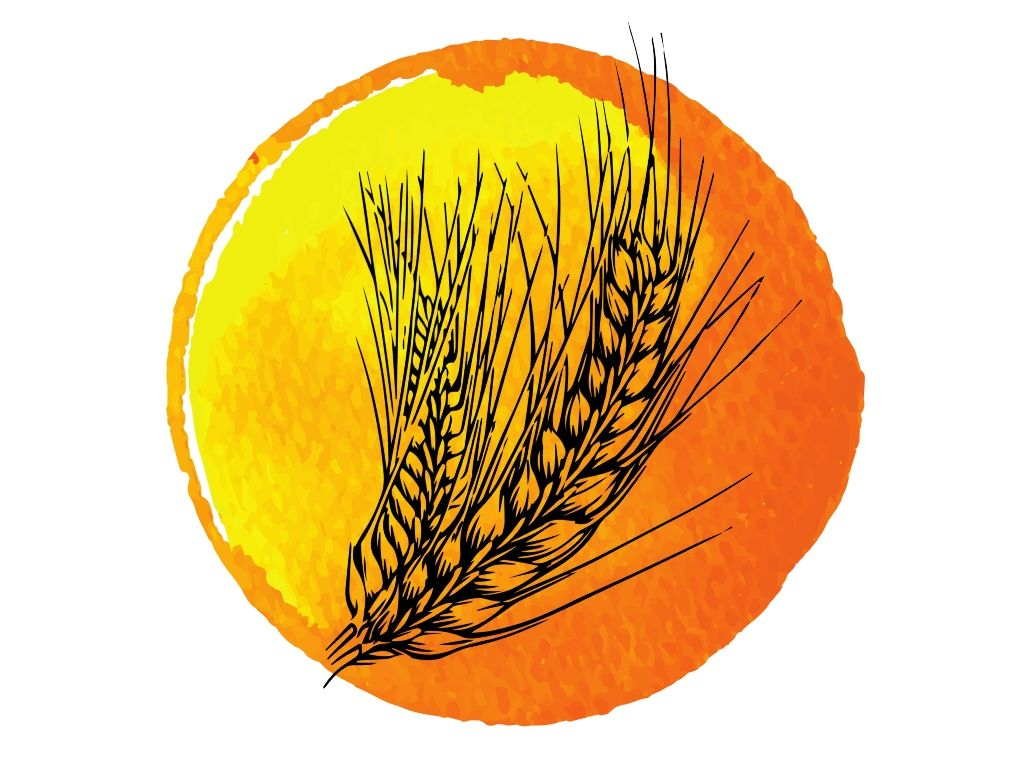 ear of wheat against a golden watercolour background