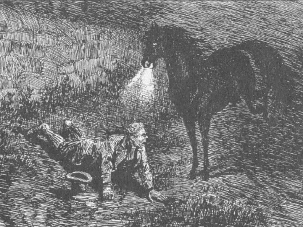 Celtic Pukah in horse form after having taken a man for a wild ride
