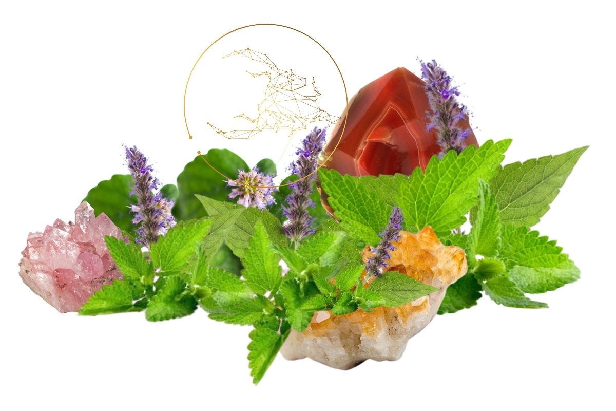 patchouli flowers and leaves with scorpio sign and crystals for magickal properties of patchouli