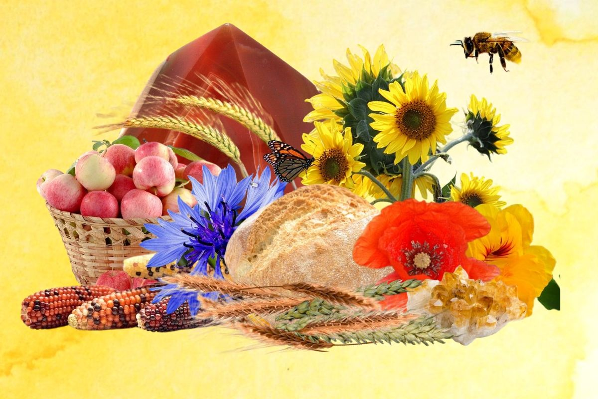 lammas festival feature image with autumnal fruits and decorations