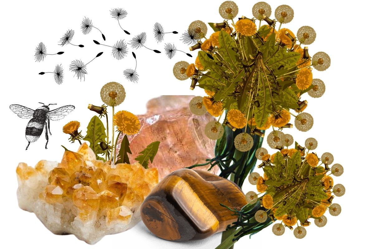 dandelions with crystals and a bumblebee