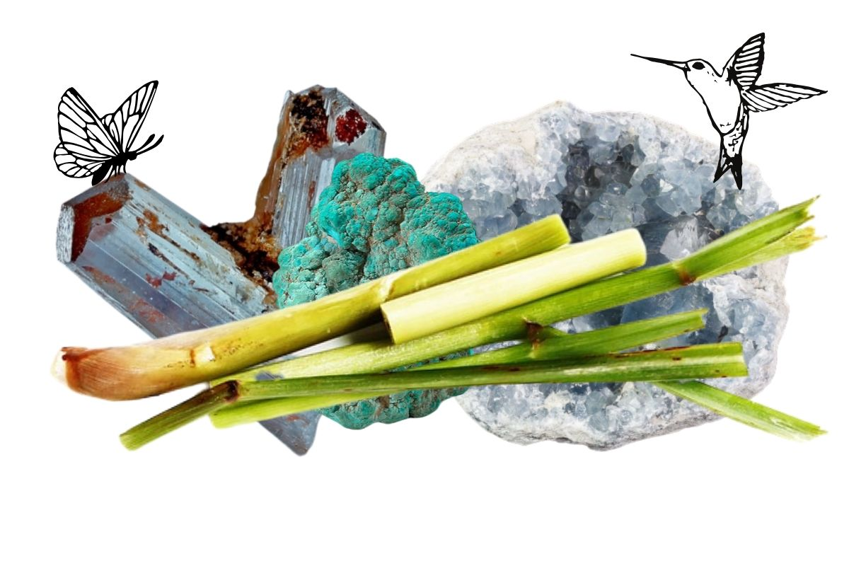 lemongrass feature image with crystals