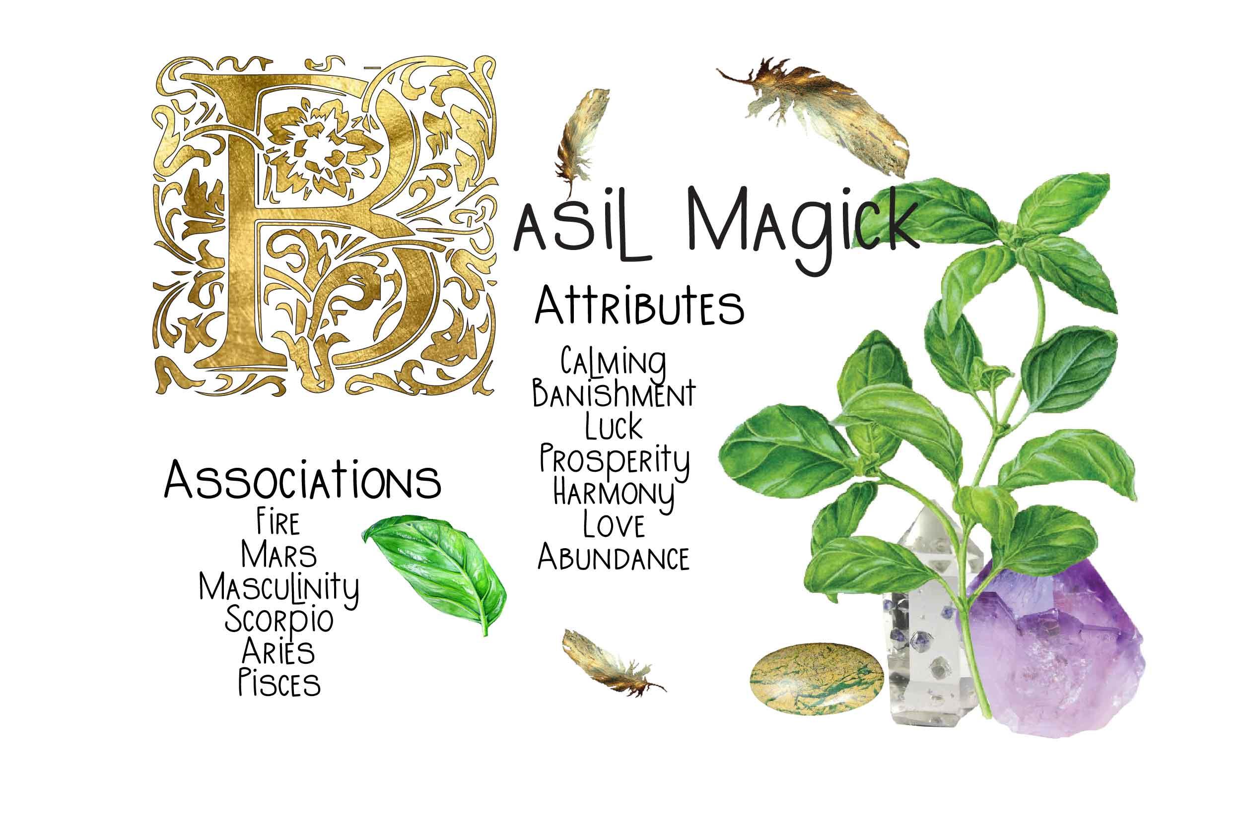 Basil Magick