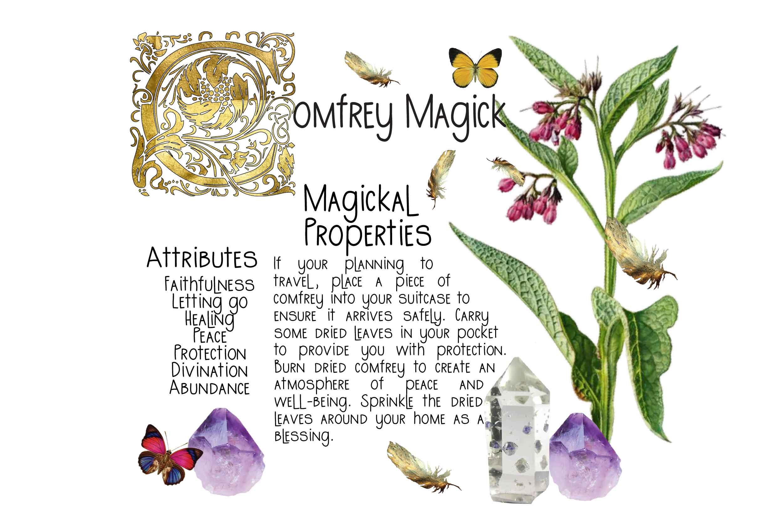 Comfrey Magick