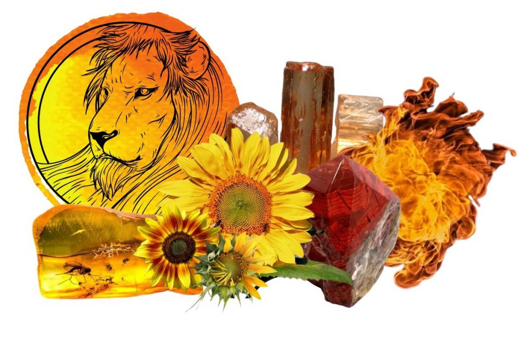 magickal properties of sunflowers illustrated
