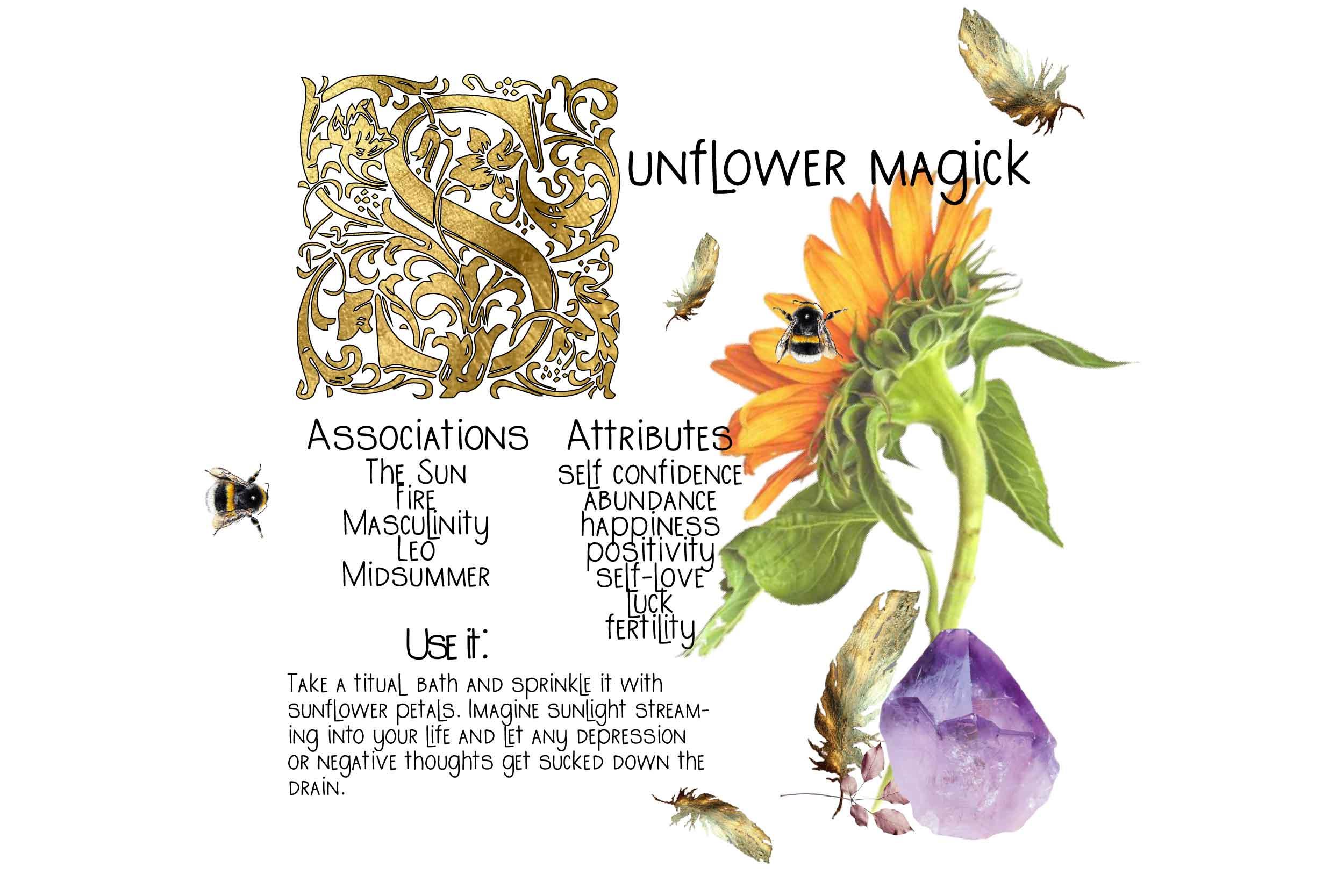 Sunflower Magick