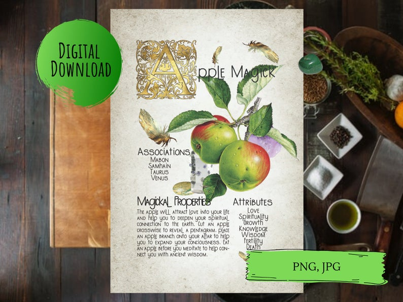 magickal properties of apples book of shadows page
