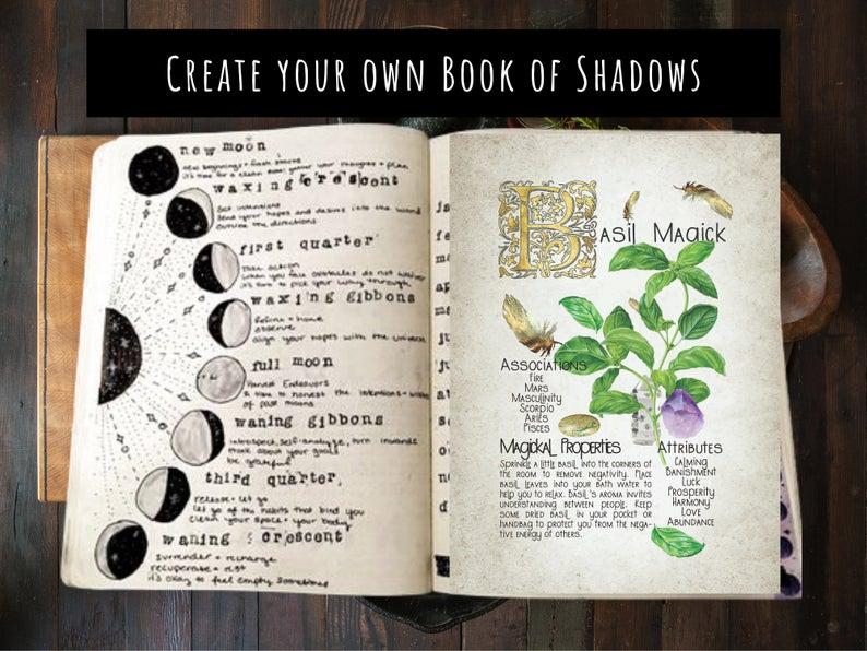 magickal properties of basil book of shadows page