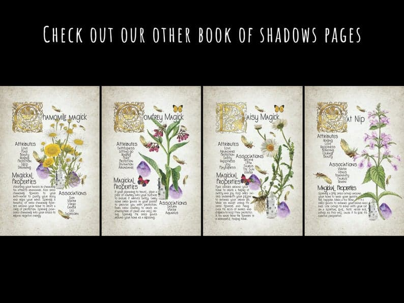 4 plant book of shadows pages