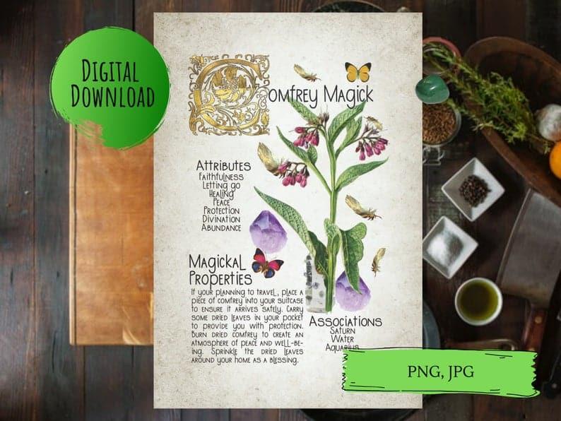 comfrey magick book of shadows