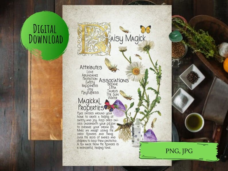 daisy magick book of shadows page