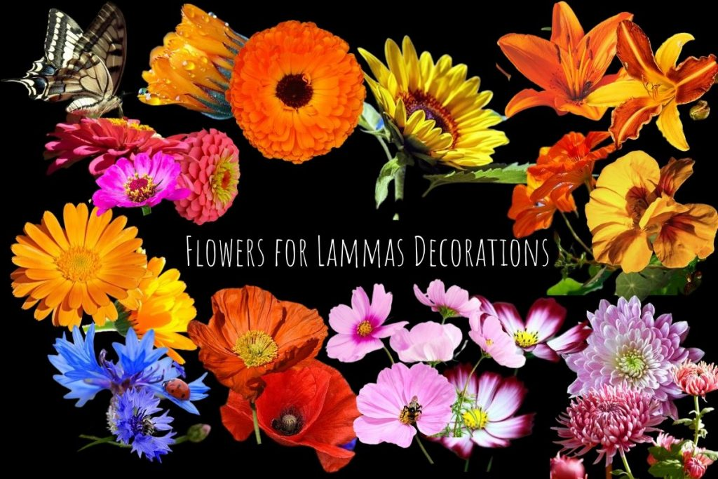 flowers on black background for lammas decorations