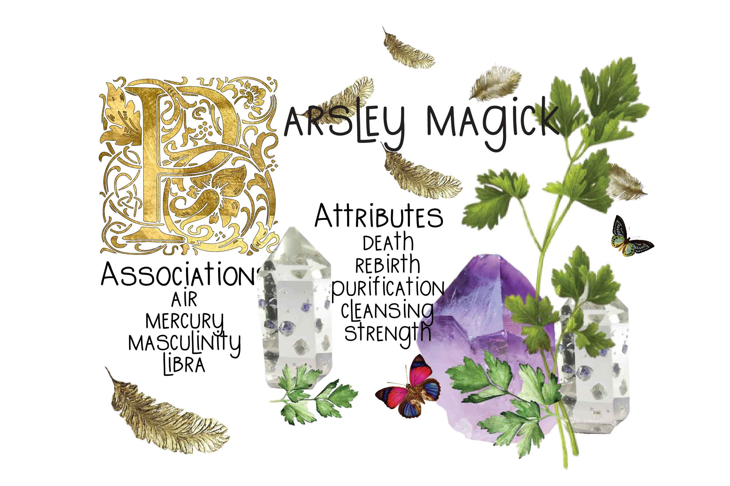 PARSLEY magick