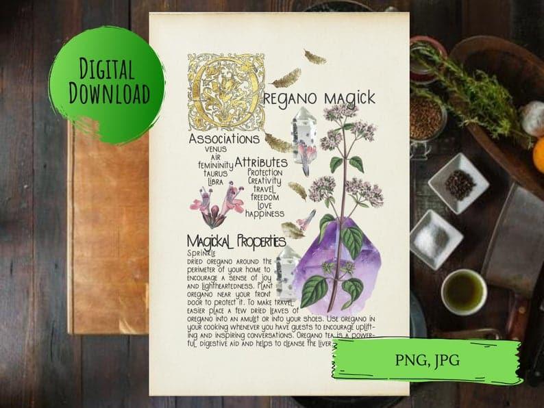 magickal properties of oregano book of shadows page
