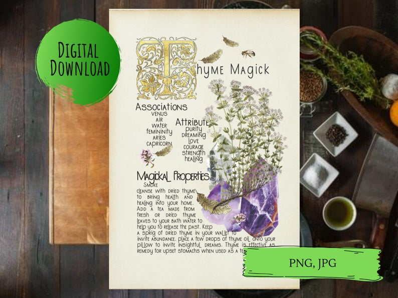 magickal properties of thyme book of shadows page